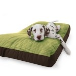 olive-green-jumbo-cord-dog-bed_1