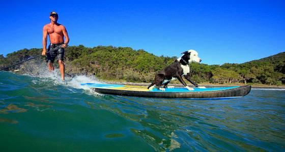 www.seabreeze.com.au