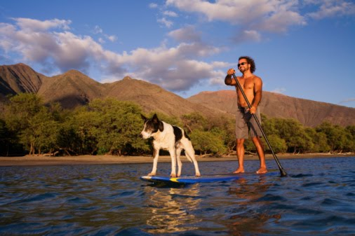 2paddleboards