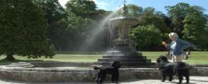 9. fountain and oscar