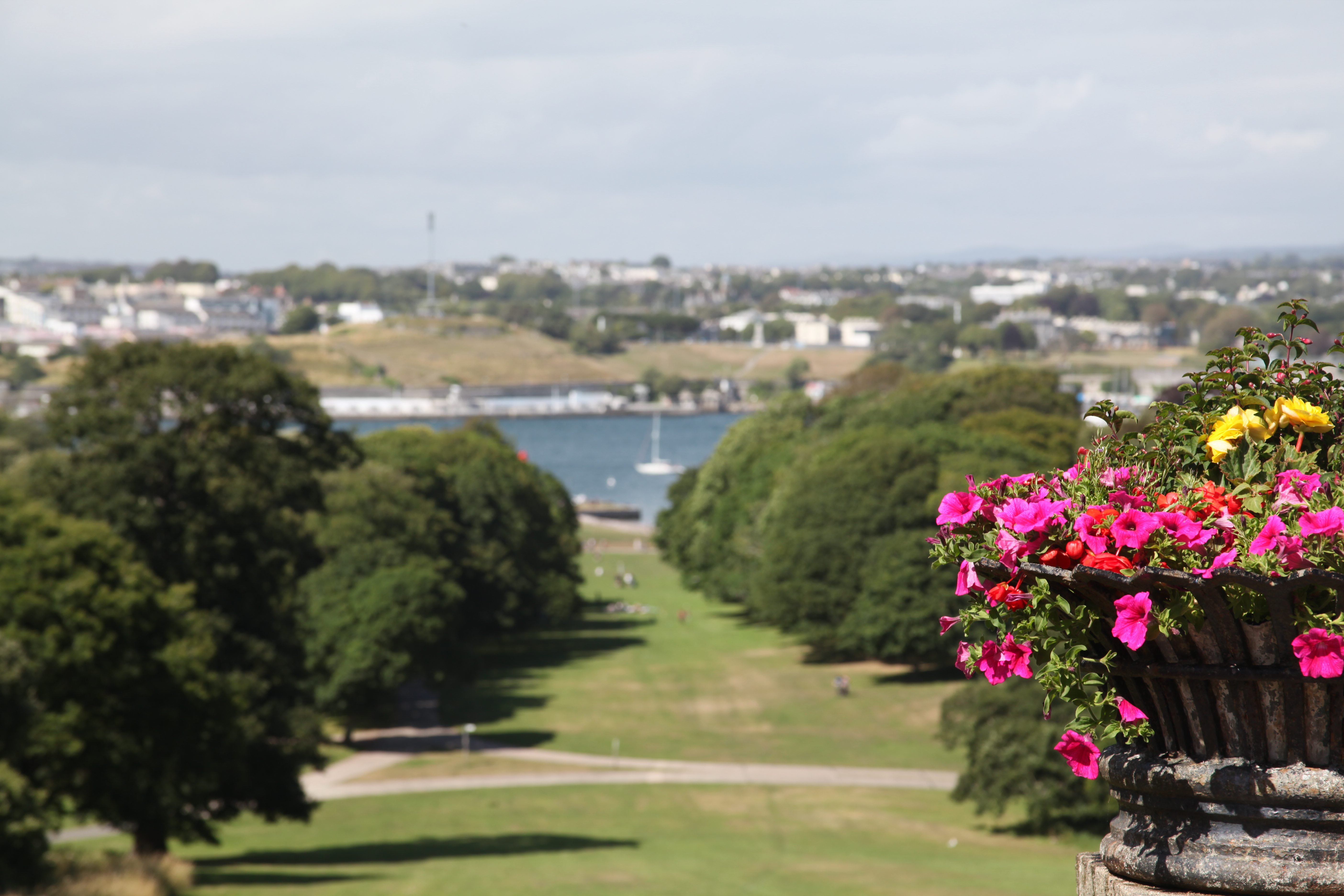 Dog Friendly Places To Eat Torpoint