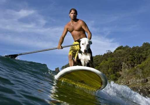 See more great photos of dogs SUP here http://www.clubeaguasabertas.com.br/sup-dog/